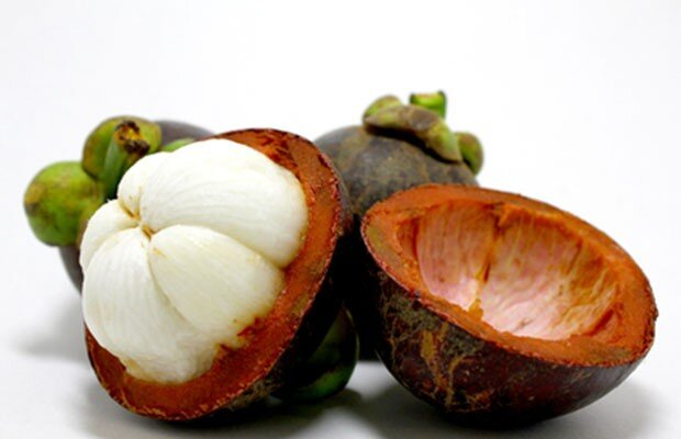 garcinia cambogia frutta calgary